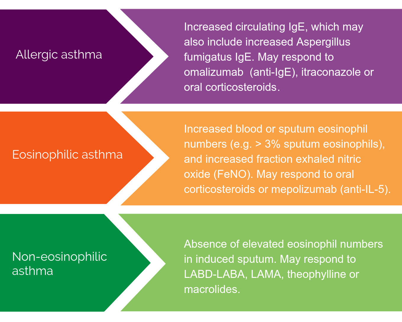 types of asthma phenotypes, allergic asthma, eosinophilic asthma and non-eosinophilic asthma