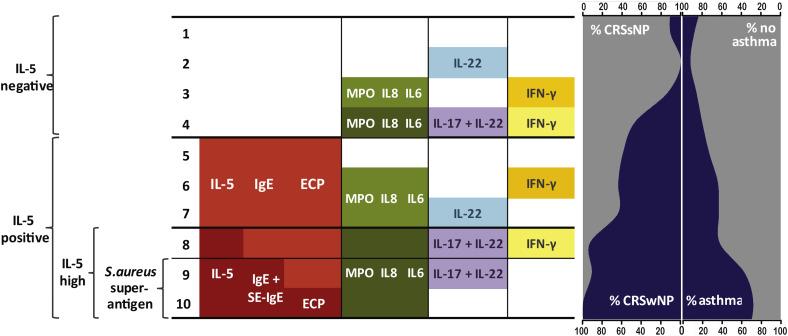 Classification, aetiology, diagnosis of Chronic Rhinosinusitis Clusters